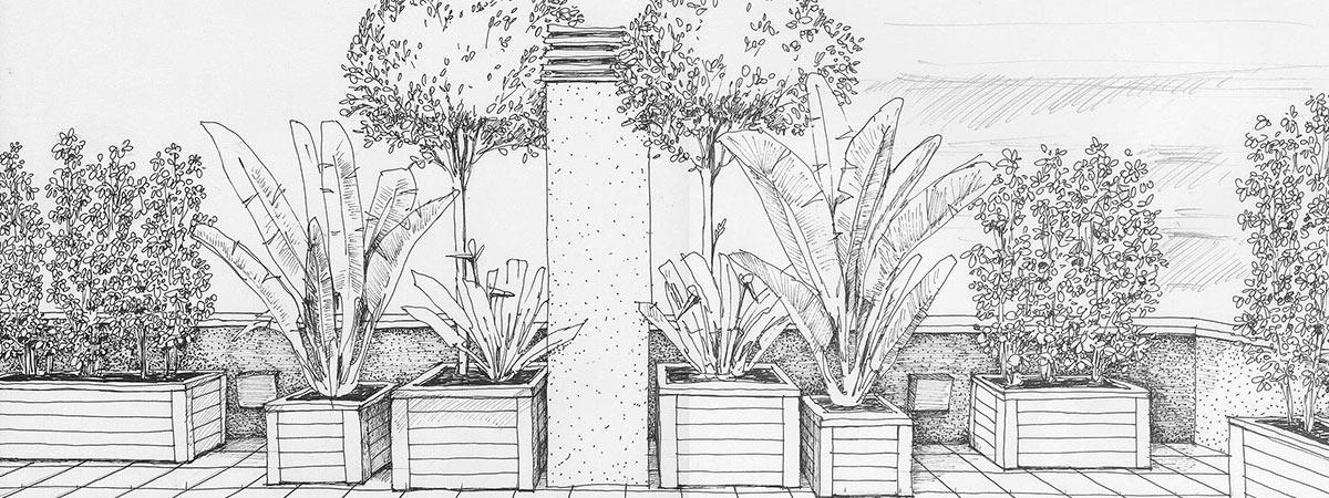 Landshaft empresa de paisajismo en barcelona for Dibujos de jardines