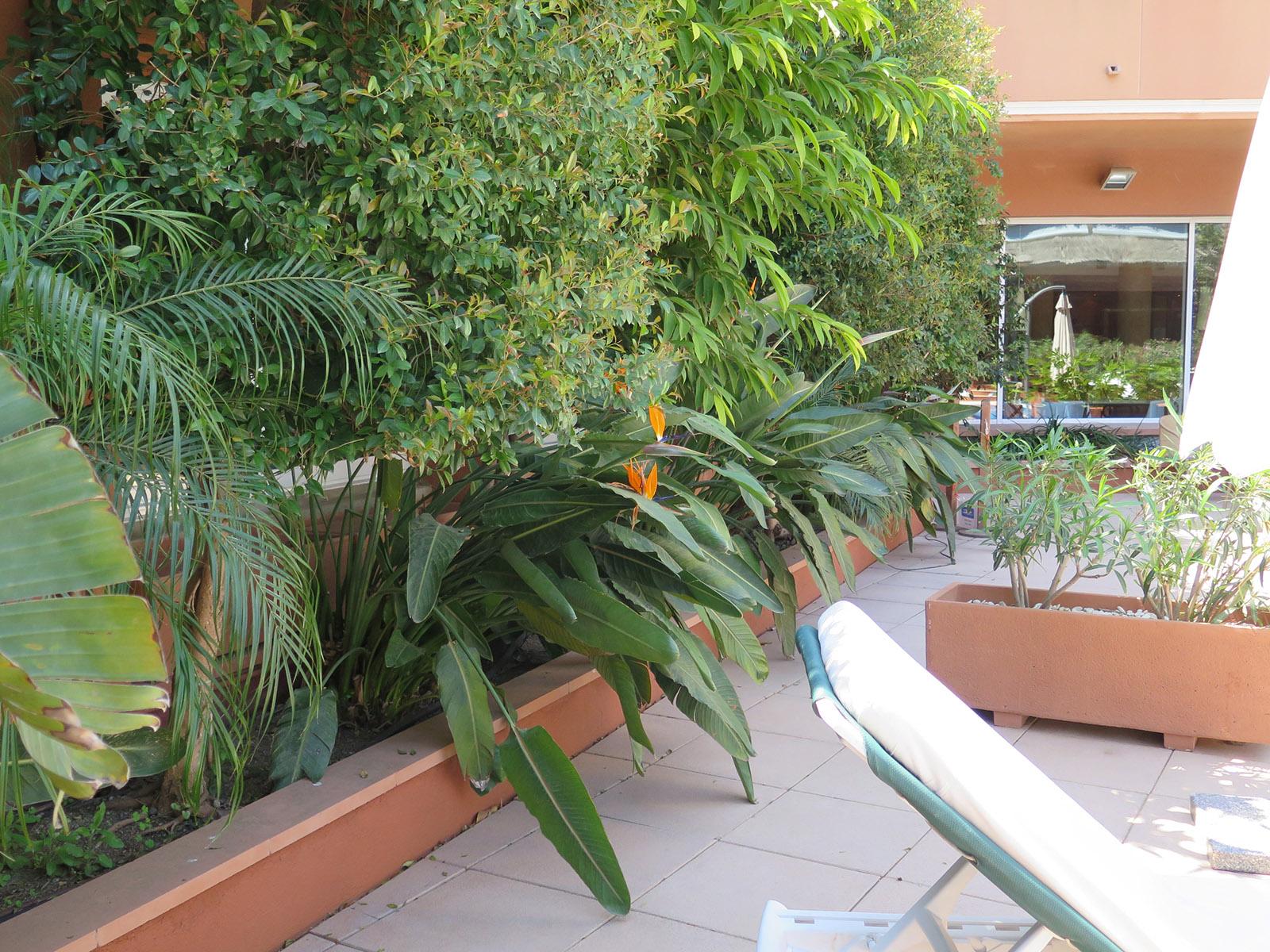 Terrazas de diseno related keywords terrazas de diseno - Jardineras modernas ...