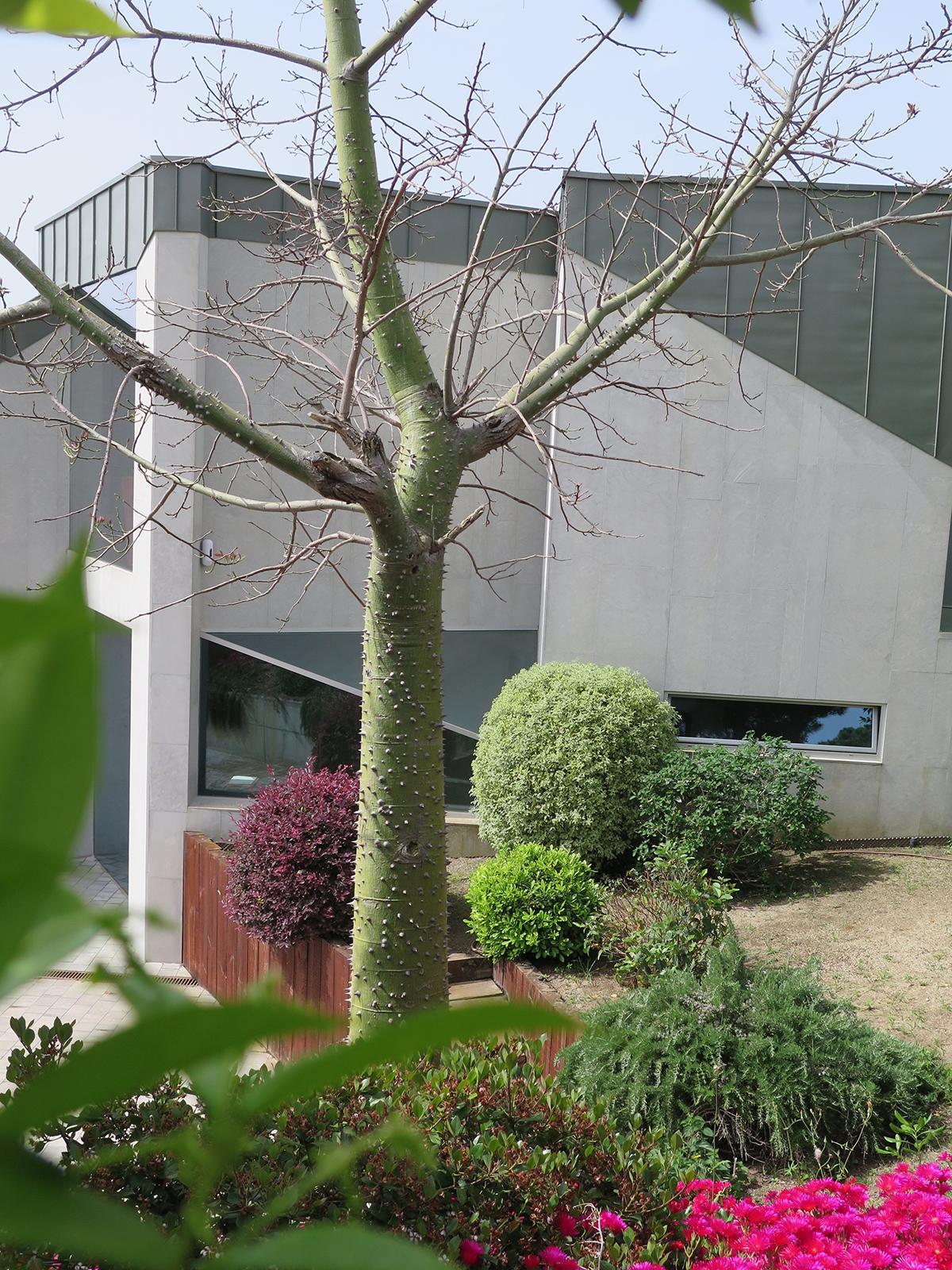 Jard n para una casa de dise o moderno landshaft for Diseno de jardines barcelona