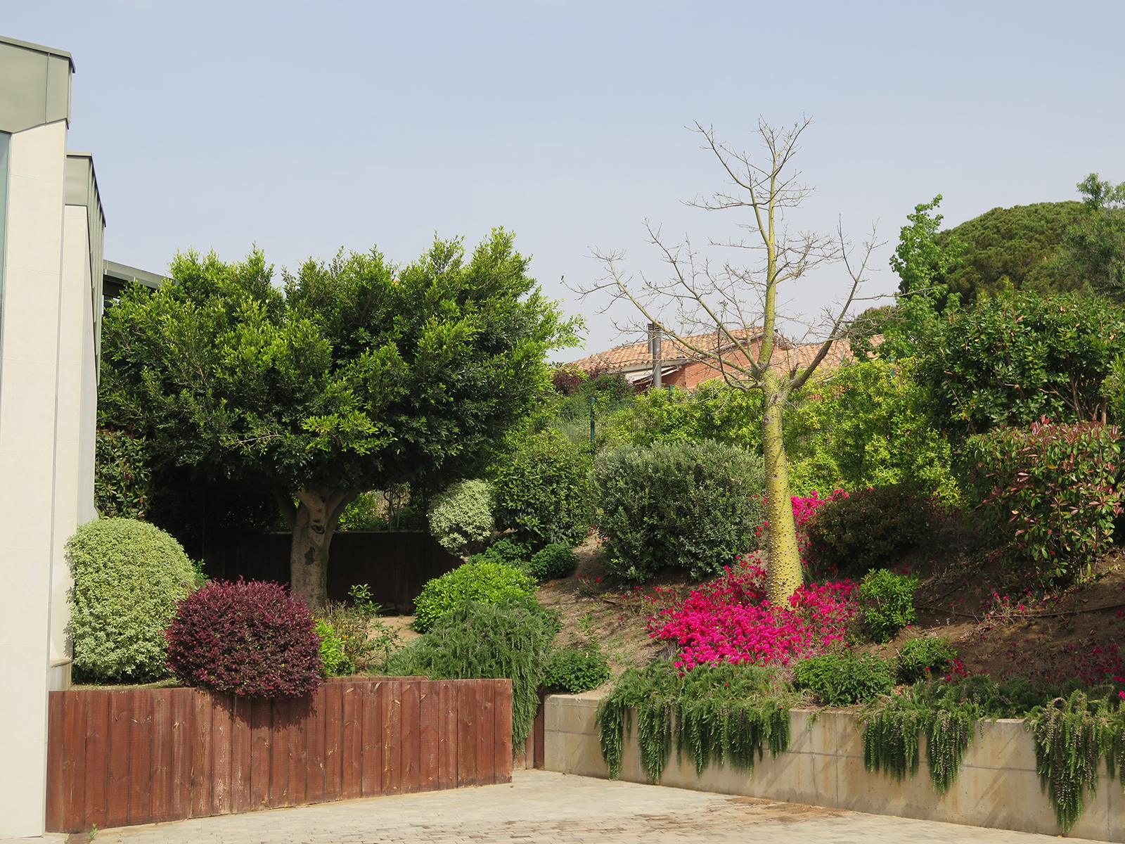 Jard n para una casa de dise o moderno landshaft for Telefono casa jardin