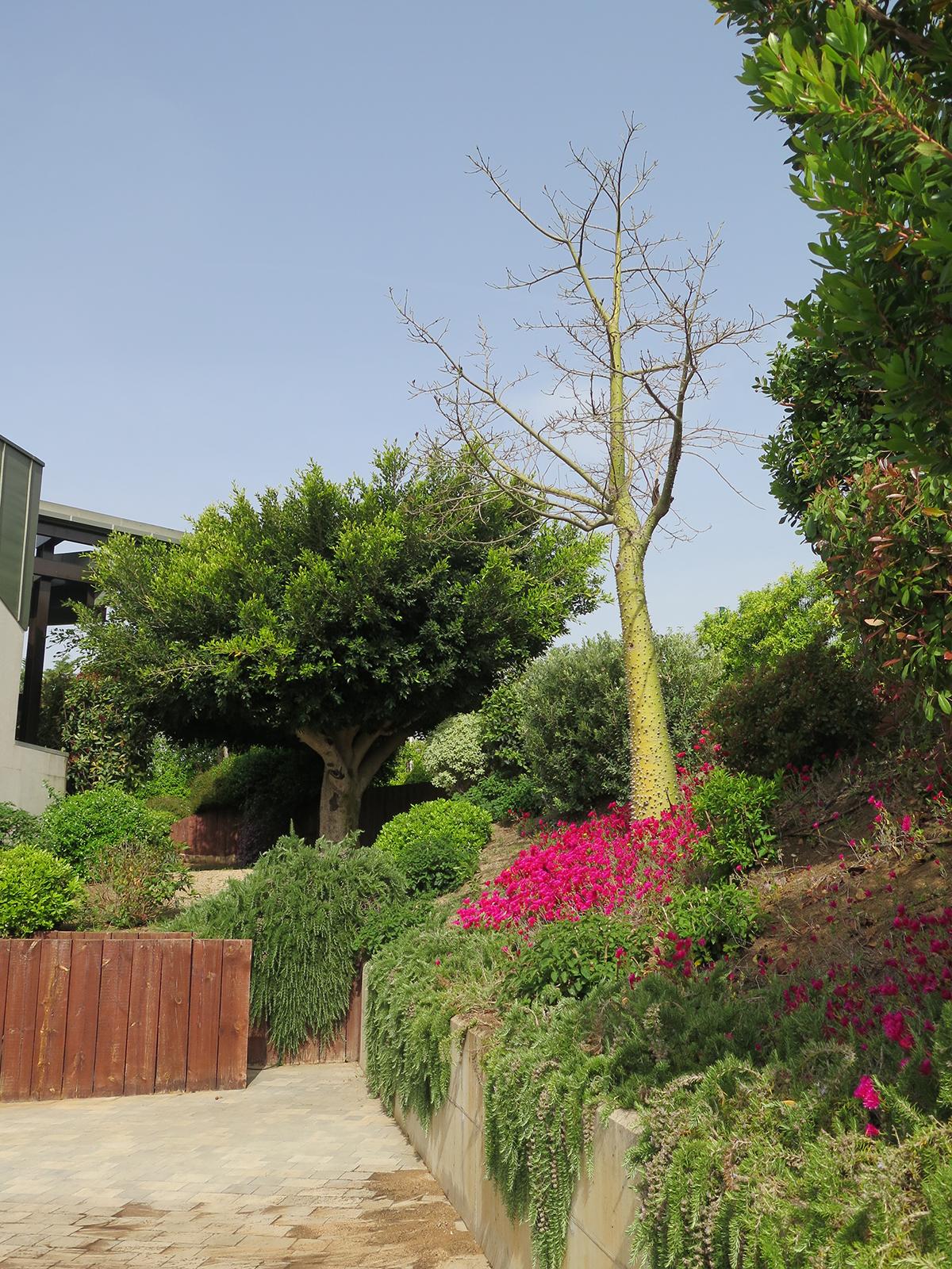 Jard n para una casa de dise o moderno landshaft for Diseno de paisajes y jardines