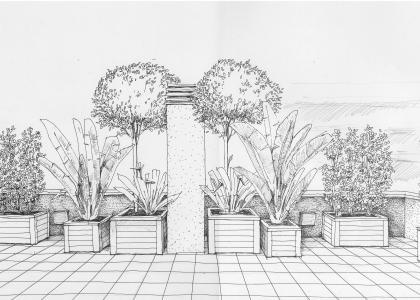 Boceto terraza en maceteros